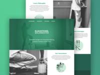 Painting Company Webdesign