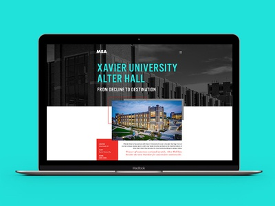 MSA Rebrand Website: Case Study