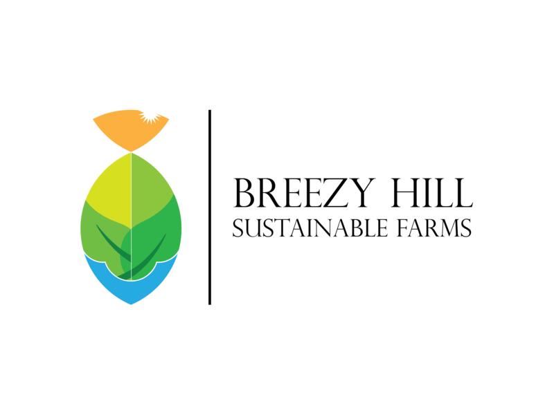 Breezy Hill Logo farm fresh farm logo farm sustainability sustainable breeze type vector logo illustration icon flat design branding