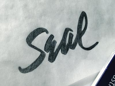 Seal pen tool wacom ai illustration handwriting graffiti paint brush cursive calligraphy lettering hand lettering handlettering