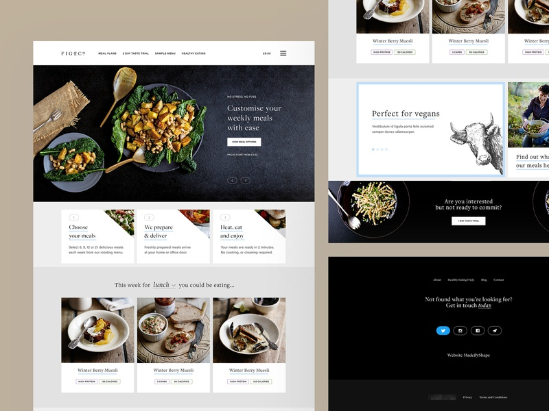 Fig&Co Elements web user inteface user experience illustration typography clean minimal design website ux ui