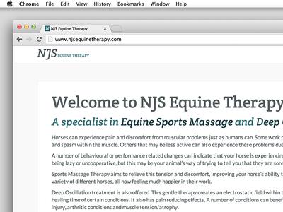NJS web design