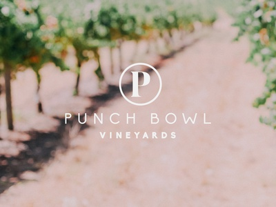 Punch Bowl Vineyards graphic design business australia brand design branding logo