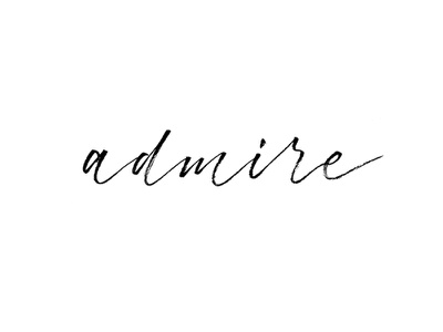 Admire | typeandgraphicslab.com logo editorial typography type quote lettering inspirational hand written hand drawn custom type brush