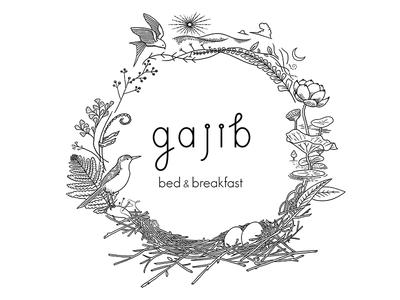 Gajib logo illustration