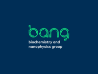 Logo for BANG