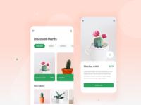 Plant shop concept