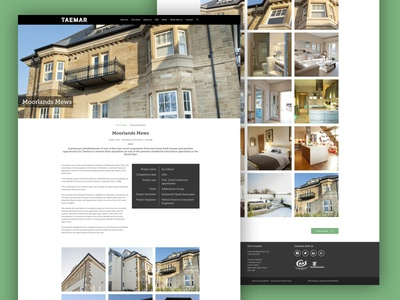 Taemar Website Design