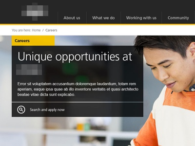 Careers careers yellow feature image search breadcrumbs menu header