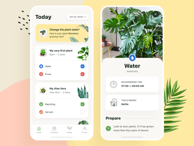 Plants App:  Today Tasks plant app garden flower growing growth guide task flourish plant plants typography user experience app design user interface ux design cards ios ui app