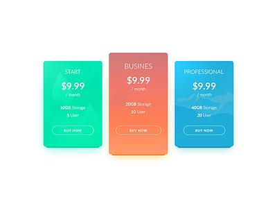Pricing pricing day030 dailyui 100days