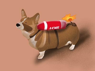 Procreate illustration happiness bomb cute brushes procreate corgi dogs animals illustration design