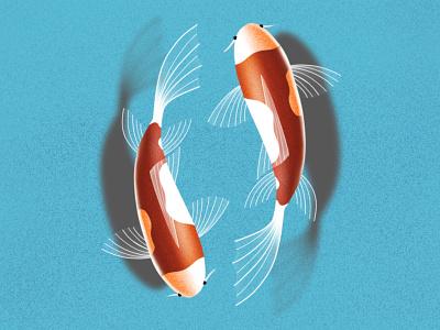 Procreate illustration koi fish blue water fish animals procreate illustration design brushes