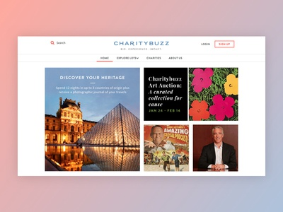 Phase One of Charitybuzz rebrand + redesign charity auction ui redesign rebranding
