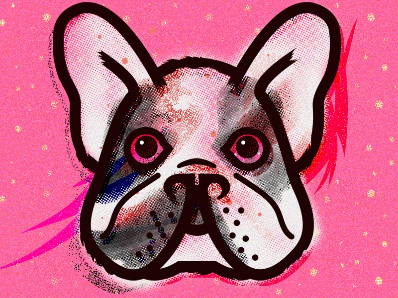 Good Girl! pink illustration ears big small dog frenchie