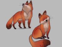 Fox study