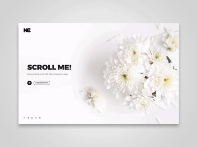 Fullscreen Vibe fullscreen fullpage scroll fashion ui design template web ui corporate restaurant hotel coming soon