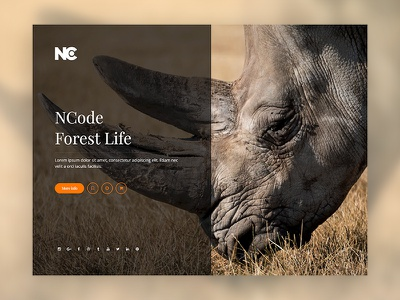 Creative Forest Website ui ux ux animation vector layout minimal site web design web ui ui design creative ncodeart template nc