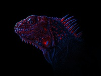 Neon Lizard