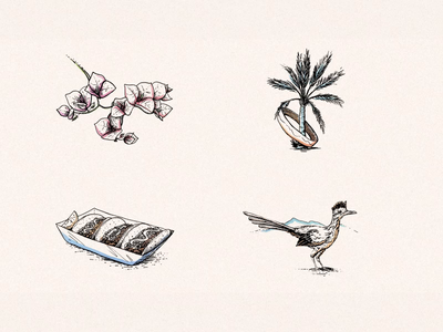 Coachella Illustrations 2020 branding 2d animation animation ux ui web design web spot illustrations hand drawn illustration illustration