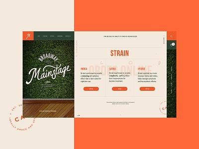 Mainstage Dispensary - Homepage Website Design Concept 🌱 dispensary product design typogaphy ui web graphic desgin web design design creative branding