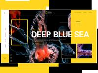 National Geographic Concept Website Design