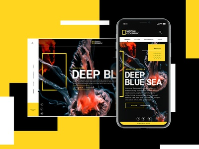 National Geographic Mobile Design Concept