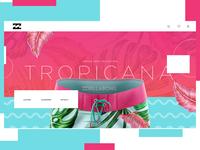 Billabong Website Design Concept