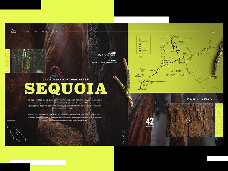 California National Park Website Design Concept national park sequoia ui typogaphy web graphic desgin web design design creative branding