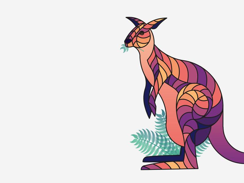 Australia: Kangaroo kangaroo animal illustration design