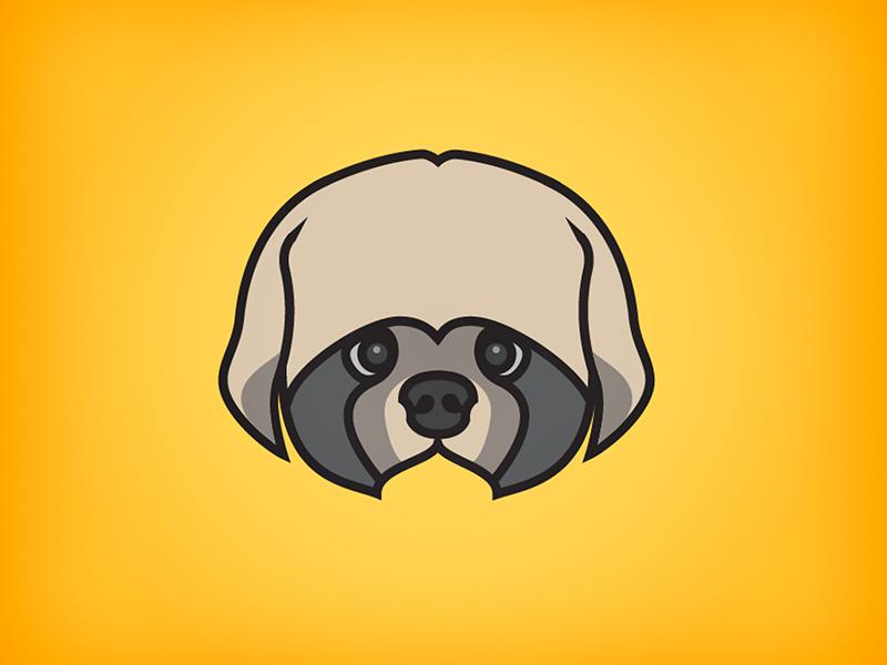 Shih Tzu dog icon illustration shih-tzu yellow
