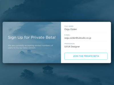 Invitation for Private Beta UI beta private beta invitation