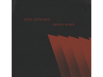 Stee Downes Lp Art 1 sleeve cover art vinyl print
