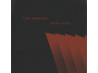 Stee Downes Lp Art 1