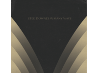Stee Downes Lp Art 4
