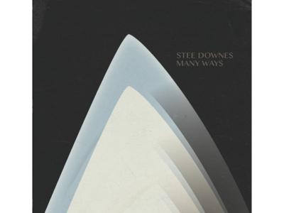 Stee Downes Lp Art 3 sleeve cover art vinyl print