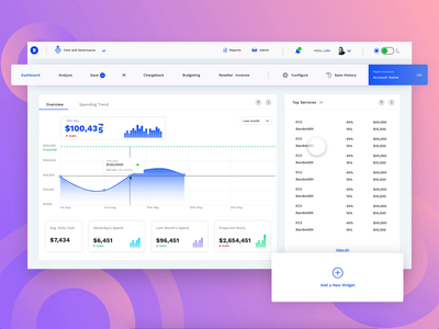 WebUI Light webui web visual finance adobexd webapp dashboard ui design creative
