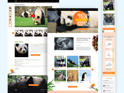 Zoo Online vector illustration app ux art ui design