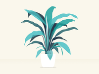 peace lily vector