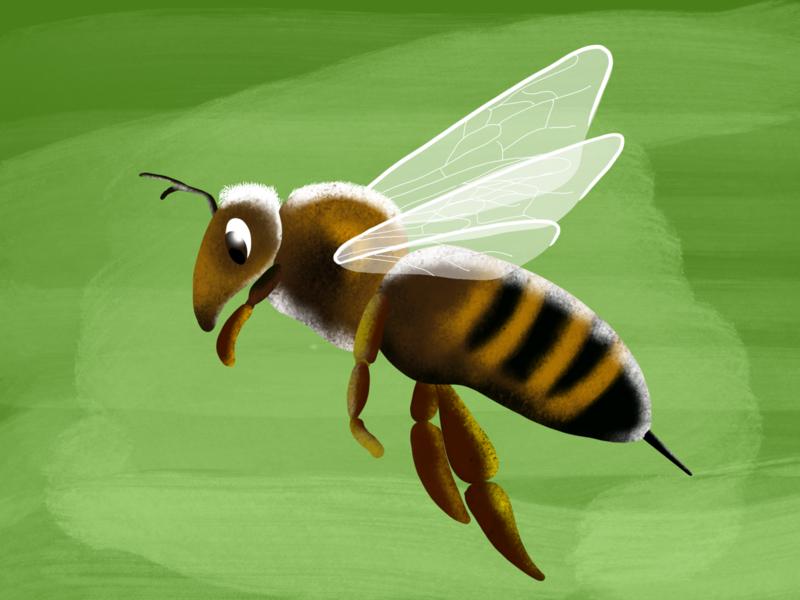 Illustration from my children's book visualdesign illustration procreate