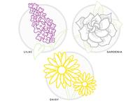 Morning Sketching - Flowers