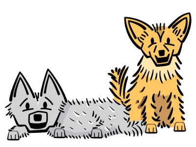 Two Dogs vector illustrator sketching animals pets