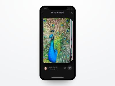 Gallery app concept