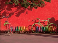 Colorful Bicycles And Bike Rack In Europe