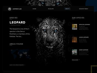 A Leopard Information page