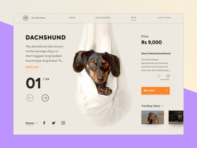 Dachshund- The Hotdog