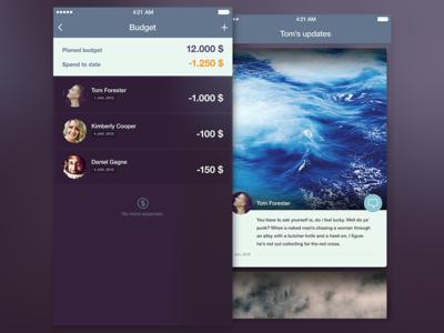 Budget & updates photo card cards avatars budget app ios