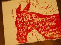 The Mule of Summertown