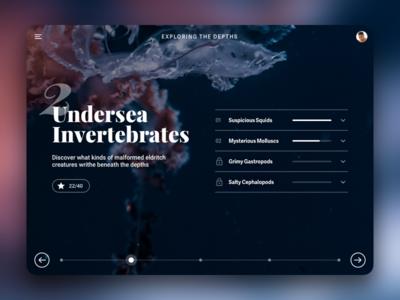Undersea Invertebrates concept web ux ui lesson