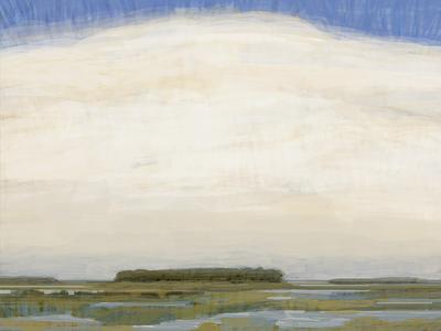 Marsh Vegas Study painting landscape